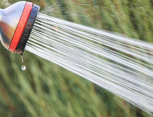 Tuning Your Sprinkler System | Ray Lusk Plumbing